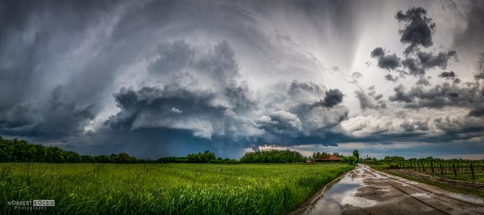 Receding Cell by NorbertKocsis