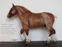 Collection Images: Priefert's Radar by Breyer by CarolaFunder