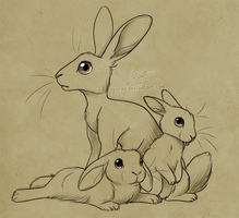 Rabbits And A Hare by Pipann