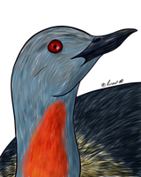 How I Draw A: Red-throated Loon (request) by horse14t