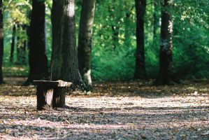 Another bench... by jesushero