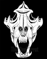 Inktober Day 4 - Skull by thewisecarrot