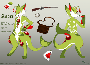 Anori Reference Sheet by LuckyLucario