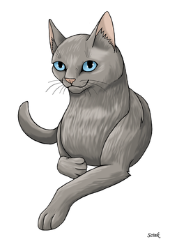 Cat (Request) by Scink