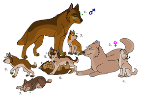 Wolf Adoptables 17: CLOSED by Manic10974