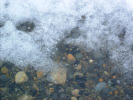 Ice in shallow water by Arctic-Stock