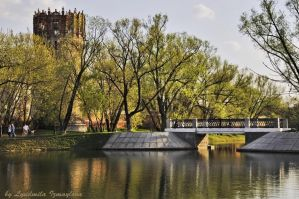 Bridge to Novodevichy Monastery by Lyutik966