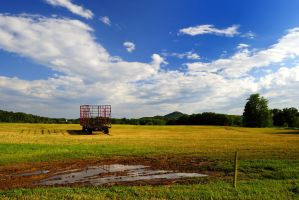 Summer countryside by MetalMX6