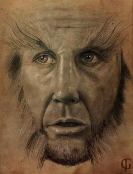 Beorn by ShotLiver