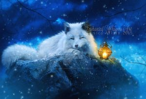 White-fox by EnchantedWhispersArt