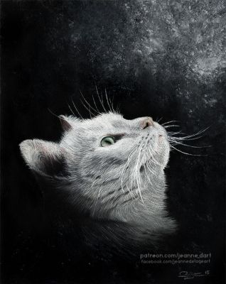 White Cat in Pastel | Speedpainting by Jeanne-Lui