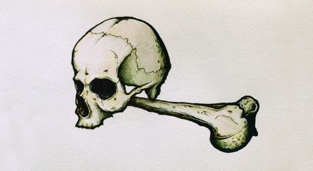 Skull and bone. by AProtas