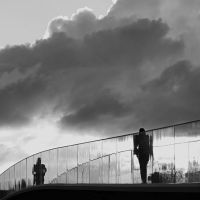 the bridge walkers by m-lucia