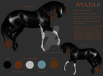 Matar Reference by ShaleseSands