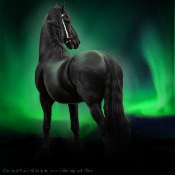 Ruler of Auroras by SeaHeartStables