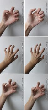 Clawed hand reference stock pack by QueenWerandra