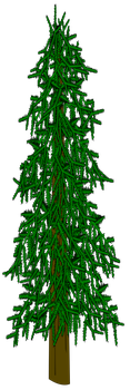 Evergreen Tree Vector by dutchscout