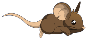 Transformice - Mouse : Run by Ludolik