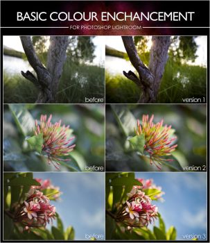 Basic Colour Enhance Presets - For Lightroom by InfuzedMedia