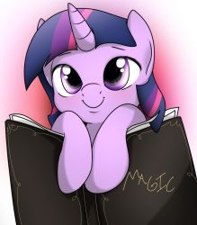 Student Twilight by Fotasy