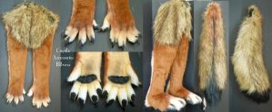 Coyote Accessories by Magpieb0nes