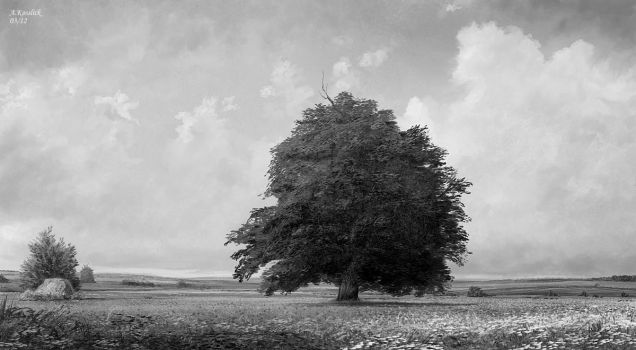 sketch of the lonely summer field by andrekosslick