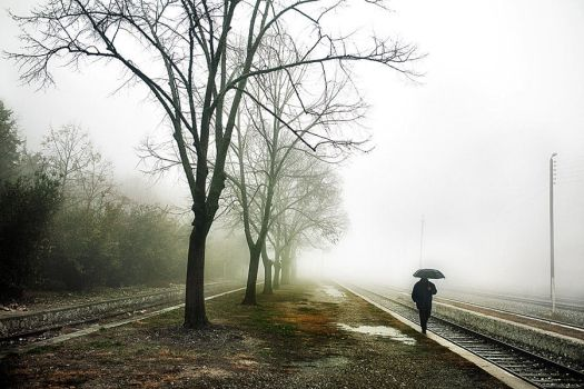 Walk in the fog by Chris-Lamprianidis
