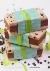 Giant Chocolate Chip Ice Cream Sandwiches by theresahelmer