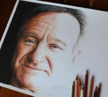 Robin Williams - WIP by NestorCanavarro