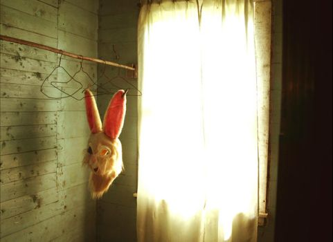 Rabbit in a Closet by doncarstens