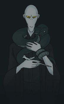 Voldemort by H2a