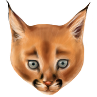 Caracal by Grandere