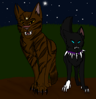 Tigerstar and Scourge by Unholy-Spirits