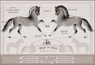 Aslaugur Fra Lundum - Official ref sheet by BH-Stables