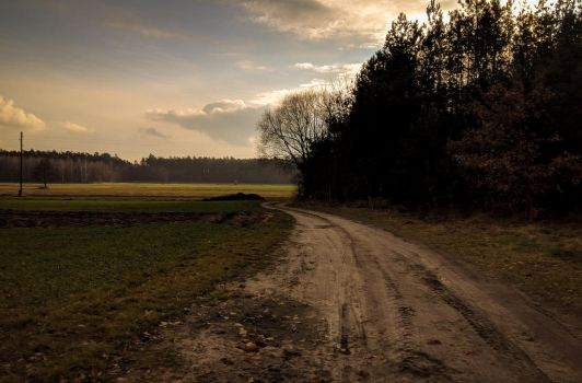Country Road by Rdzeniuch