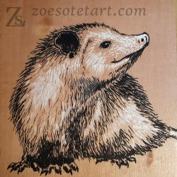Virginia Opossum by ZoeSotet