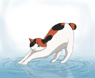 Cat on Water by NowhereRain