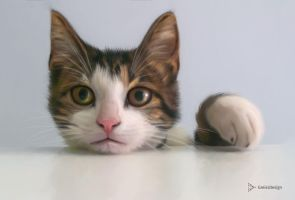 Painting of a CAT in Photoshop by greissdesign