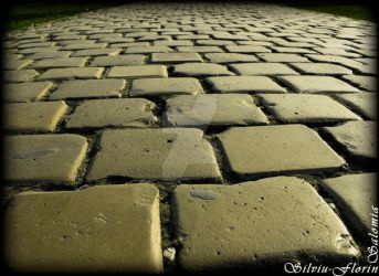 Endless road by Silviu-Florin