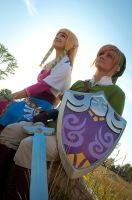 Skyward Sword 1 by patchestakesphotos