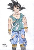 Dragonball - Son Goku 2 by parsek76