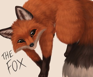 The Fox by Eevora
