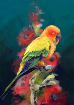 Parrot by maricho