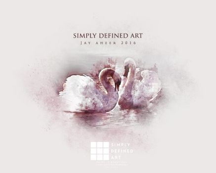 Swans by SimplyDefinedArt