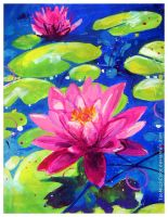 Water Lilies by TooMuchColor