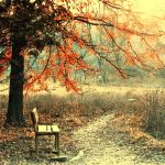 under red trees by dorothei