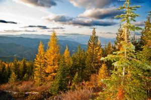 Fall in Sanders County, Montana by quintmckown