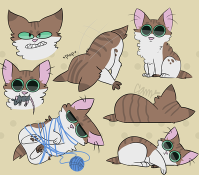 Cat doodles by SketchBird5