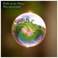 Flower in a Bubble by twombold