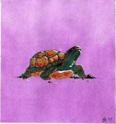 Turtle by EmoPizza